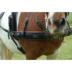 Kieffer Shetland harness synthetic