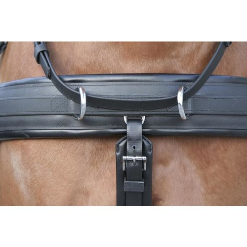 Kieffer Kieffer Easy go Combination Harness for pair 32 mm