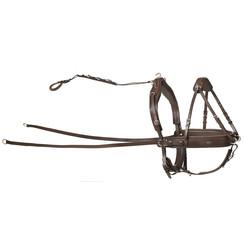 Kieffer leather pair harness