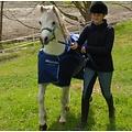 Bucas Bucas Turnout Pony Smartex Regen