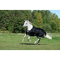 Bucas Bucas Turnout pony Smartex Rain