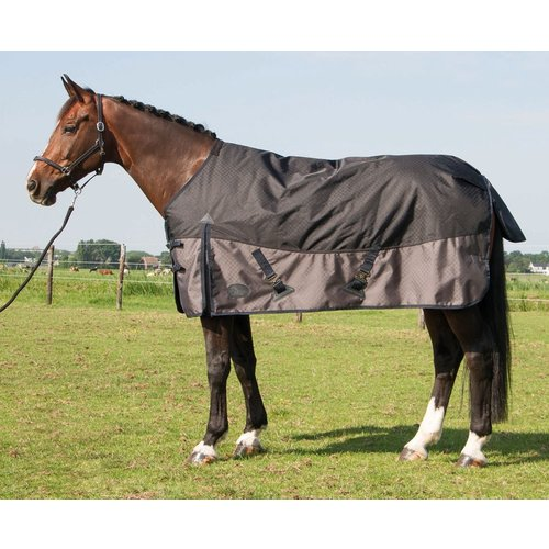 Harry's Horse Harry's Horse Outdoordeken 300m gram vulling Stretch Limo