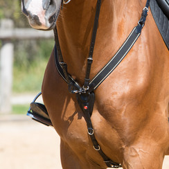 Kieffer breastplate with martingale Arlene