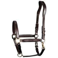 Harry's Horse Halter brown leather Supreme
