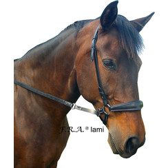 F.R.A. Lami bitless bridle (System 4)