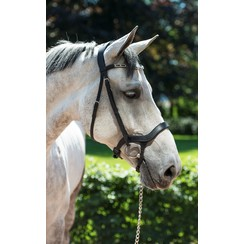 HB Showtime Freedom bridle