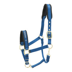 Kieffer stable halter Collection, durable!