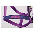 Harry's Horse Harry's Horse Halfterset Diva Purple Paars