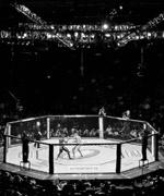Cimeli firmati da MMA arti marziali miste