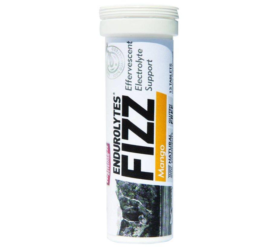 Hammer Nutrition Endurolytes Fizz (13 tabs) Hydration tablets