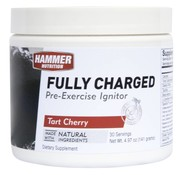 Hammer Nutrition Hammer Fully Charged Carboloader - 30 servings