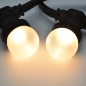 Inclusief warm witte lampen 2650 K