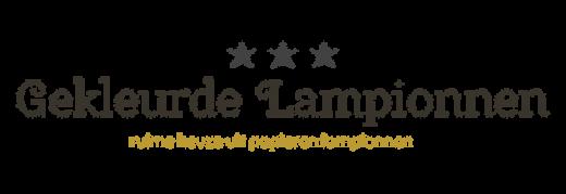 Lampionnen kopen van papier als versiering | Gekleurdelampionnen
