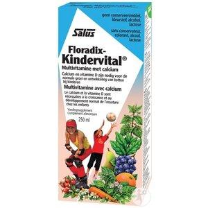 Floradix Floradix Kindervital - 250 Ml