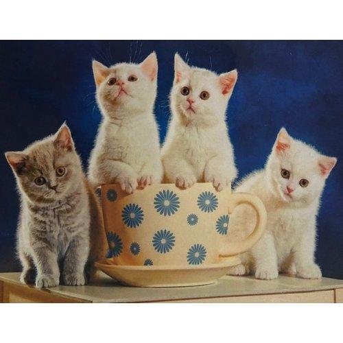 Diamond Painting 4 poesjes gezellig aan de koffie H334 40 cm x 50 cm