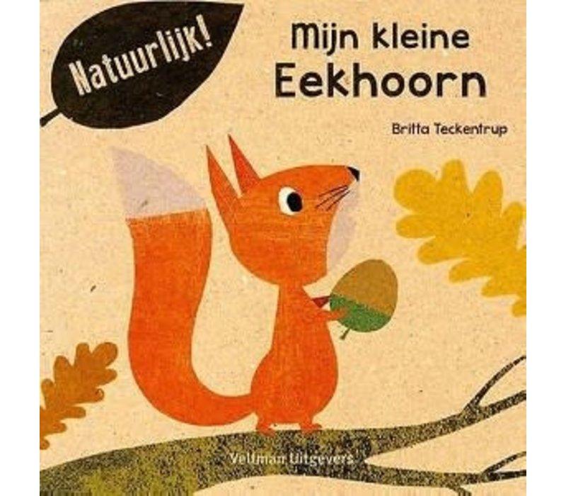 Boek - Mijn Kleine Eekhoorn