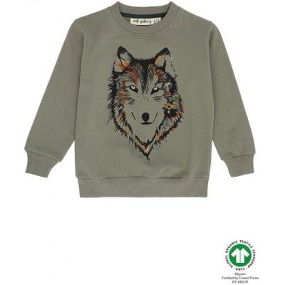 Soft Gallery Soft gallery - Konrad sweatshirt vetiver husky