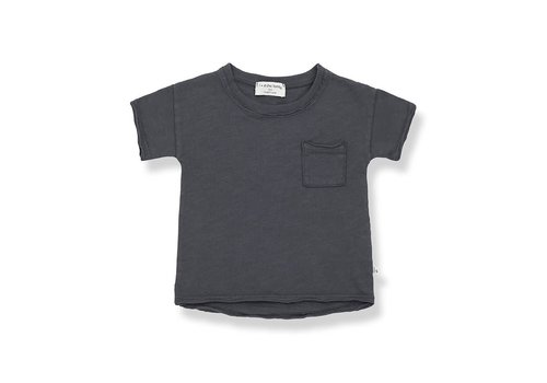 1+ in the family 1+ in the family - Nani short sleeve t-shirt antracite - 6 month