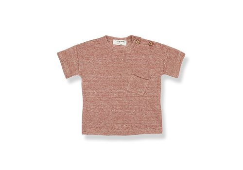 1+ in the family 1+ in the family - Victor short sleeve t-shirt roibos - 6maanden