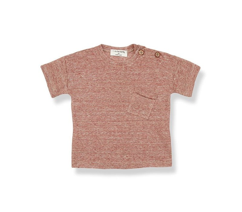 1+ in the family - Victor short sleeve t-shirt roibos - 6maanden