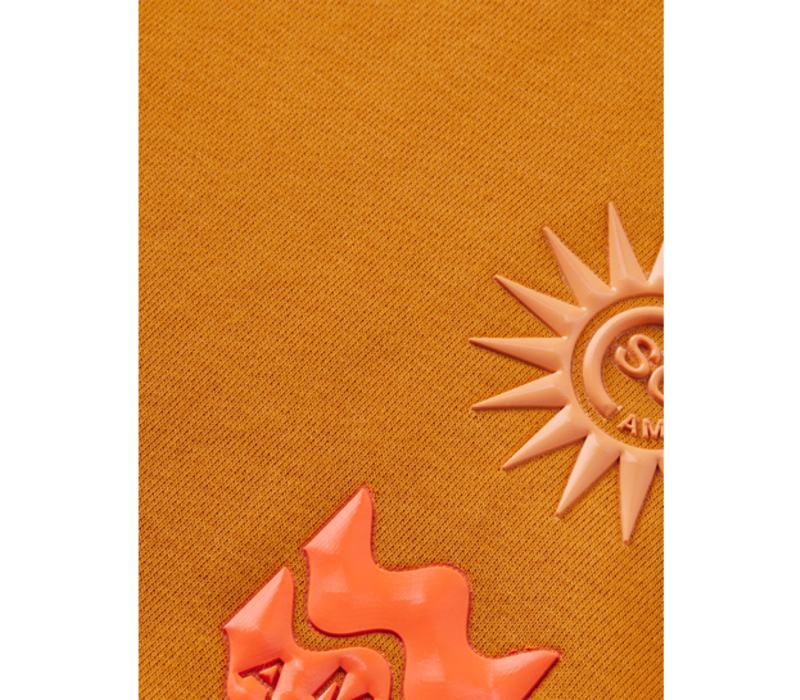 Scotch - Hoodie with artwork rib collar 161078, 0446