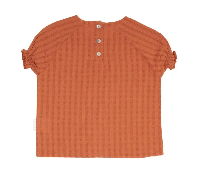 Petit blush - Moon raglan blouse sierra - 5/6 year