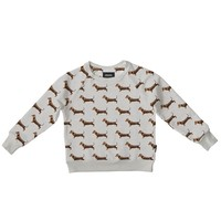 Snurk - James grey sweater kids