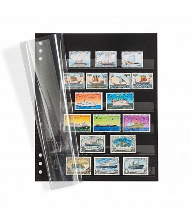 Einsteckblätter Omega / Schwarzer Karton Mit 6-Klarsichtstreiffen / Klarsichtdeckblatt