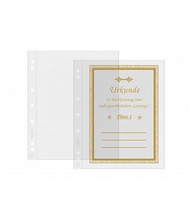Sheets Numis For Banknotes / Postcards / 1 Pocket