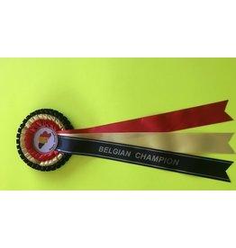Belgisch kampioen