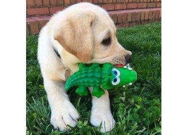 Latex speelgoed pup