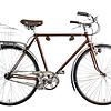 Citybike in Kupferlook