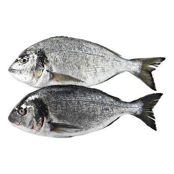 Dorade Royal  400-600 gram