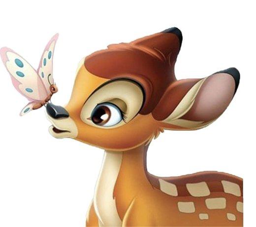 Alles van Bambi