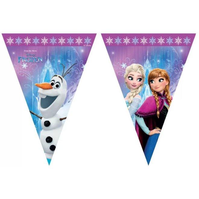Disney Frozen Vlaggenlijn - Northern Lights