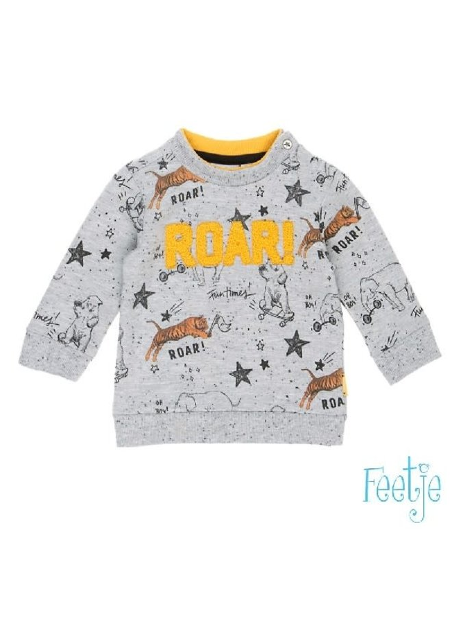 Cool Dude Sweater Roar Grijs melee