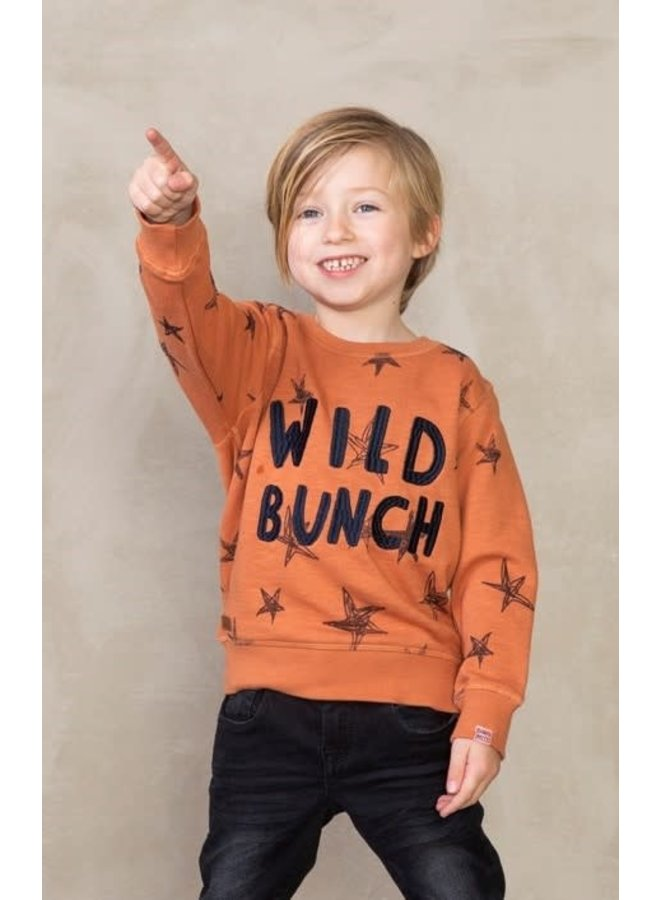 Dino-mite Sweater Wild Bunch Brique