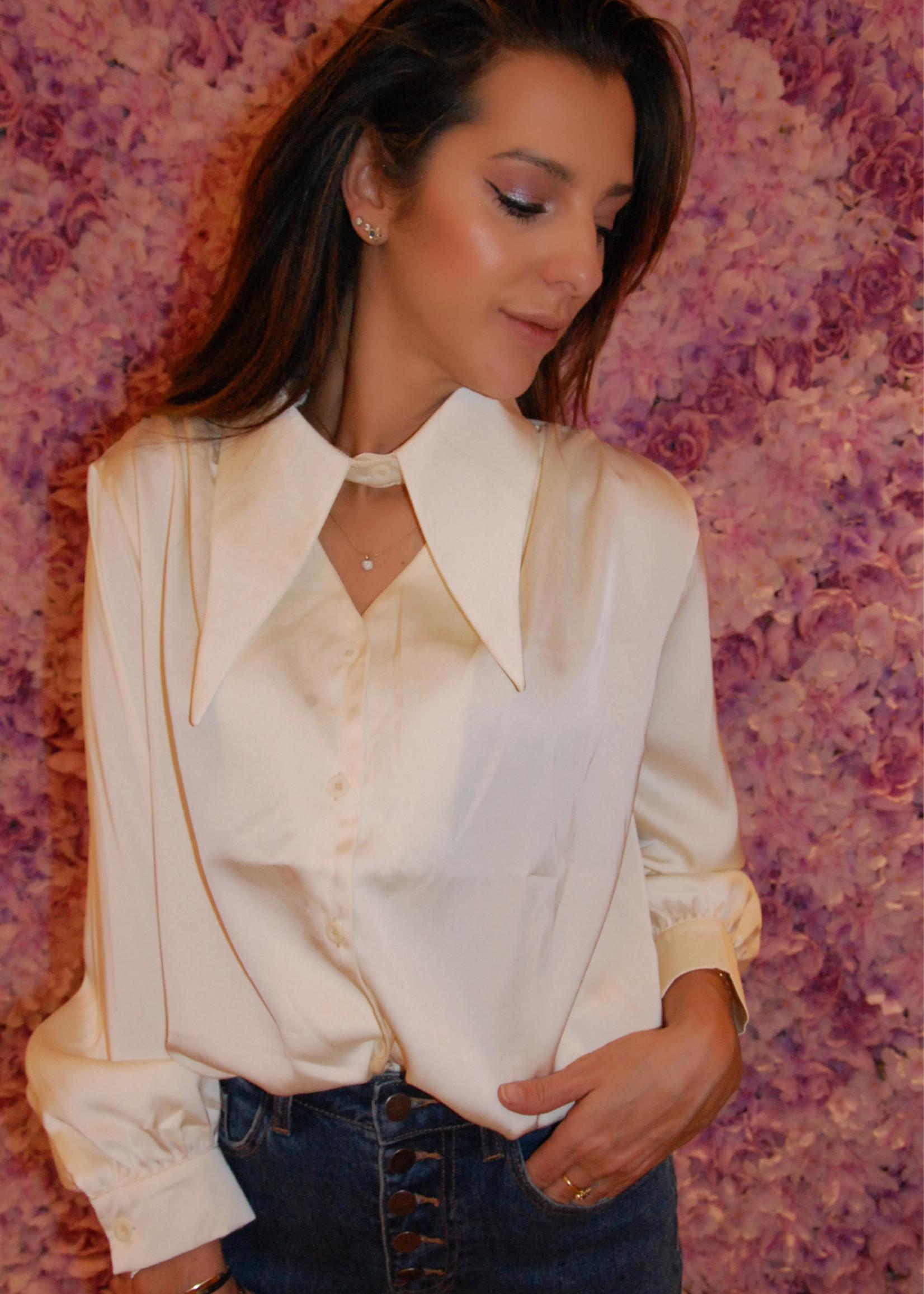 Satin fantasy blouse