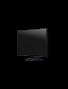 EIZO FlexScan LCD Ultra 24 inch (16:10) 1920x1200 BK