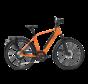 e-bike performance rd11 speed diamond dutch orange Elektrische fiets heren