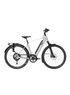 Qwic e-bike performance rd11 diamond chalk white Elektrische fiets heren