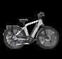 e-bike performance rd11 diamond chalk white Elektrische fiets heren