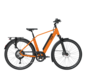 e-bike performance rd11 diamond dutch orange Elektrische fiets heren