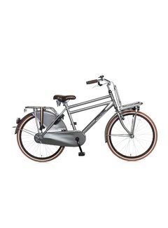 Popal Daily Dutch Basic 24 Jongensfiets titanium