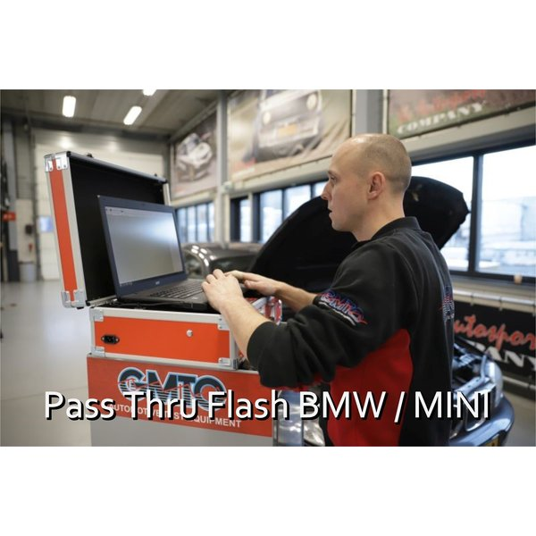 Pass Thru Flash BMW / Mini