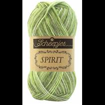 Spirit 307 Grasshopper
