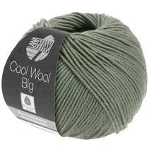 Cool Wool Big 985