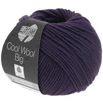 Cool Wool Big 991