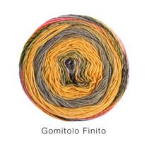 Gomitolo Finito 554
