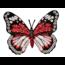 Mono Quick applicatie 14467